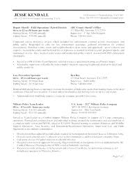 Government Resume Example Federal Government Resume Template Federal