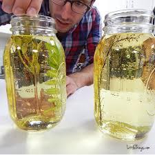 DIY mason jar oil photo holder
