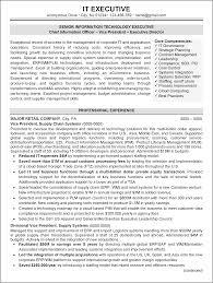 Sample Of Executive Resumes Resume Sample 1 It Executive Resume Career Resumes