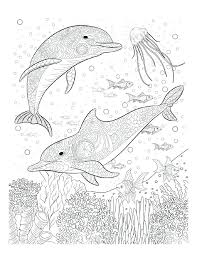 Coloring Pages Ocean Iifmalumniorg