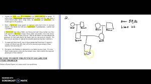 Monohybrid Family Tree Genetic Problems Youtube