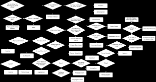 All Christian Denominations Chart So I Made A Flow Chart For The Different Christian