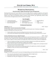 Professional Resumes Perth Professional Resume Writing Pdf Example Of Resumes Ptctechniques Info