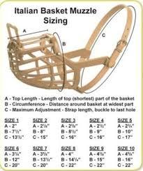 Italian Plastic Basket Dog Muzzles