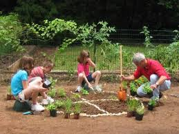 how to plant garden. pizza garden circle and slices outlined with rocks how to plant