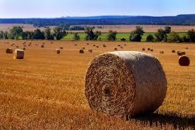 <b>Материалы для заготовки</b> сена и соломы – Компания Агри-Фарм