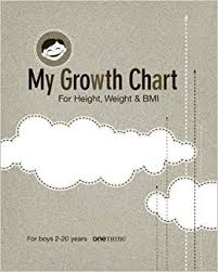 My Growth Chart Boys 2 20 Years For Height Weight Bmi