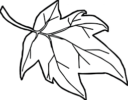 Coloring Pages Blank Leaves For Book Kids Autumne Cover Letter