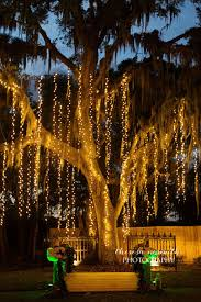 Wedding Tree Lights Bakers Ranch Bakers Ranch Dripping Twinkle Lights Tree