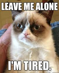 leave me alone i'm tired. - Grumpy Cat - quickmeme via Relatably.com