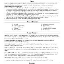 Resume For Lawyers Inspirational Lawyer Resume Format Best Sample
