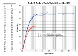 Growth Chart Bodhi Tales