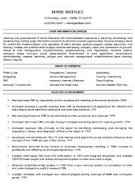 Cio Technology Executive Resume Example Sample