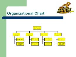 Professional Sports Team Organizational Chart Www
