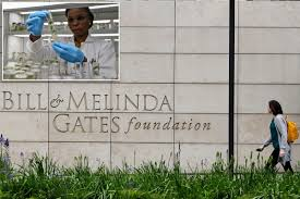 Everything you need to know about the Bill & Melinda Gates Foundation - New  York Latest News