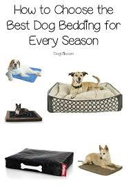15 best dog beddings for all seasons