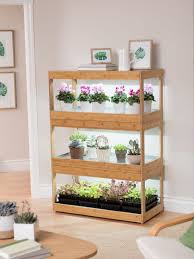 Succulent Grow Light Setup 3 Tier Bamboo Stand With Led Grow Lights For Succulents And