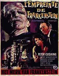 FILM REVIEW   I Frankenstein   simply  good vs  evil   Syracuse     Mary Shelley Wiki   Fandom Page   Zoom in