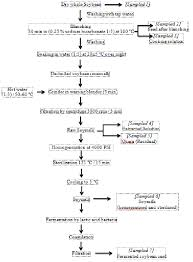 Flow Diagram For Processing Of Soybeans To Soymilk And Its