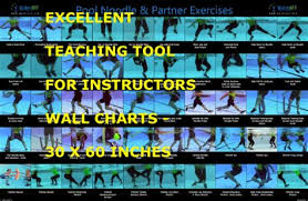 Advanced Noodle Partner Exercise Wall Chart