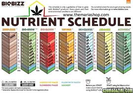 Biobizz Feeding Chart Soil Hi Fellow Cannabis Lovers I Need Your Help More Light