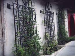 Small Picture Ideas For Metal Garden Trellis Design Ebizby Design