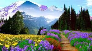 Springtime on the mountains (HD1080p) - YouTube