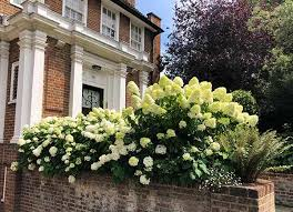 front garden ideas and why front