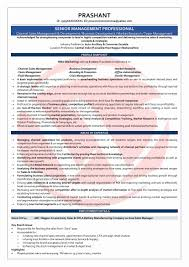 Channel Sales Manager Resume Sample Automotive Sales Manager Sample Resume Resume Sample Collection Of 15