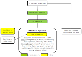 Fsis Organizational Chart The Envisaged Organizational Structure Of The Fsis In