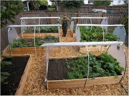 best garden vegetables. Best Home Vegetable Garden Design Gallery - Decorating Ideas Betapwned.com Vegetables T