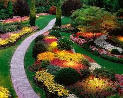 Amazing Flower Bed Plans Annuals