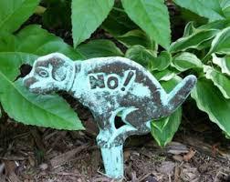 Ottawa Valley Dog Whisperer   DIY Stop Dog Urine Spots  Burns on     WelcomePup com