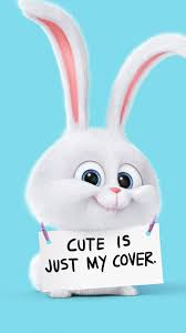 cute is just my cover rabbit android wallpaper