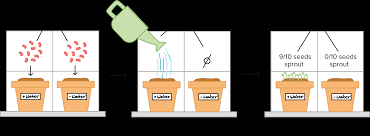 Designing A Controlled Experiment Ap Biology Answers Controlled Experiments Article Khan Academy