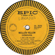 Image result for pictures of mellow yellow