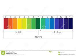 Ph Balance Chart Ph Scale Value Stock Vector Illustration Of Analysis