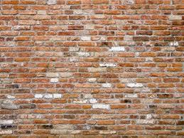 old brick wall wall art from next wall