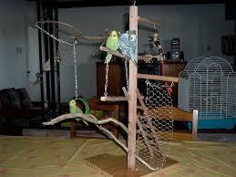 diy bird perch photo 1