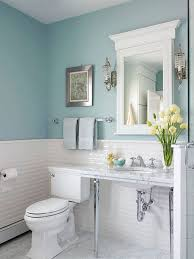 blue small bathroom