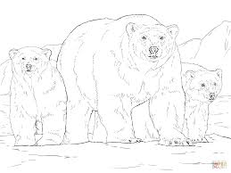 Polar Bear With Two Cubs Coloring
