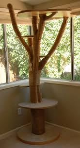 she has a beautiful cat tree that s made out of an actual tree