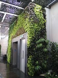Vertical Garden Green Wall Noida