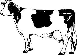 cow clipart black and white. Plain Black Cow Clip Art Throughout Clipart Black And White C