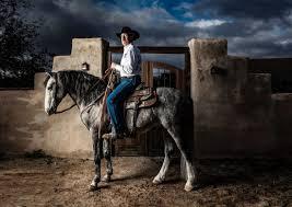 Dream Horse AZ - Dream Horse AZ