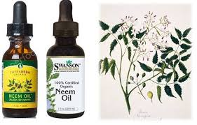organic 1neem oil spray for dogs only
