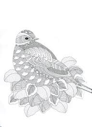 Animaux Fantastiques Bird Abstract Doodle Zentangle