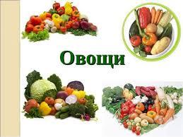 Презентация по технологии класс на тему Овощи Блюда из овощей  Овощи