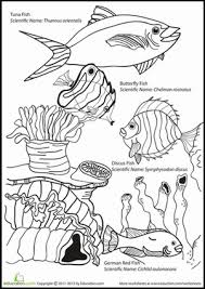 Small Picture science coloring pages 1st grade first grade math coloring pages