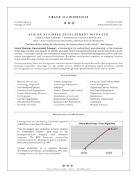 Senior Management Resume Examples Business Development Resume Example EssayMafia 24